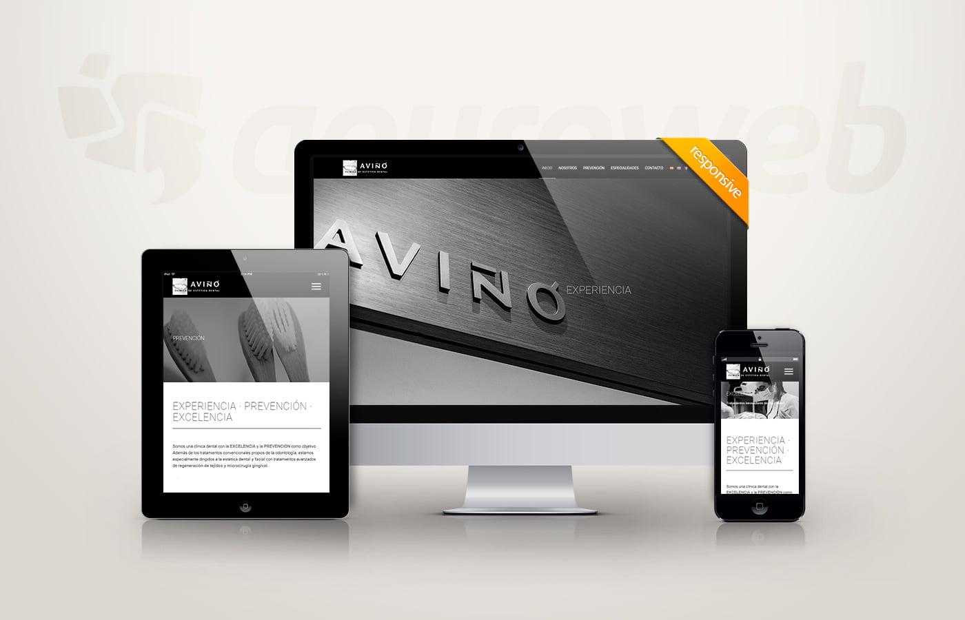 diseño web aviño