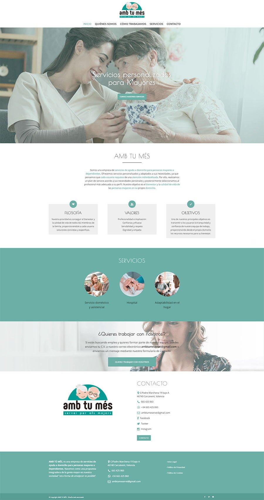 diseño web amb tu mes